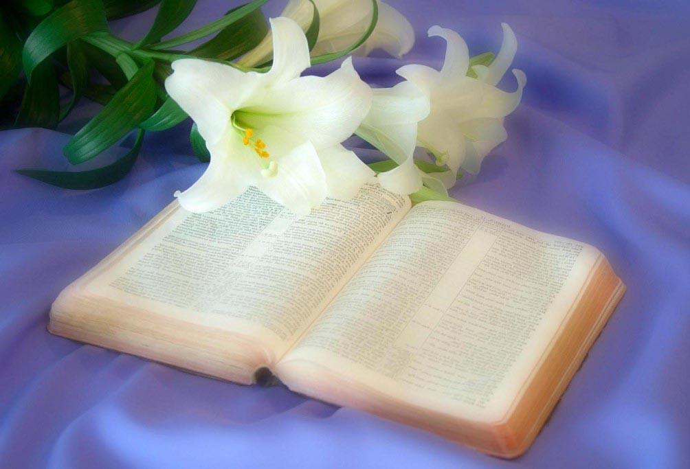Сила Слова Божьего
