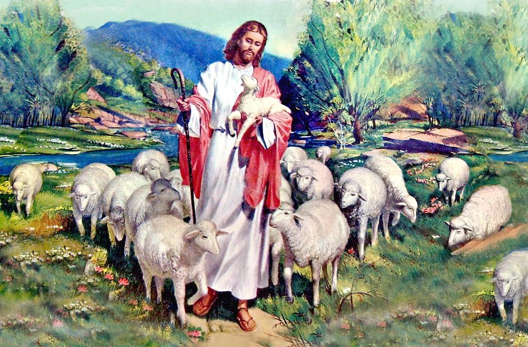 видит счастье пастух и овцы картинки она самая нормальная