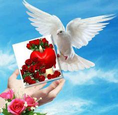 Дары веры и исцелений
