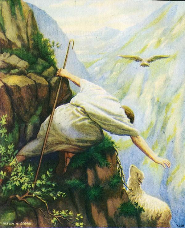 Притча о пропавшей овце в картинках
