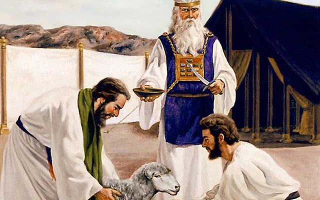 Почему Библия запрещает употреблять в пищу кровь